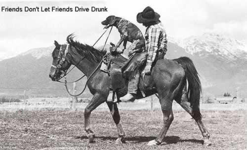 Harrisburg-DUI-Lawyer-horse-dog