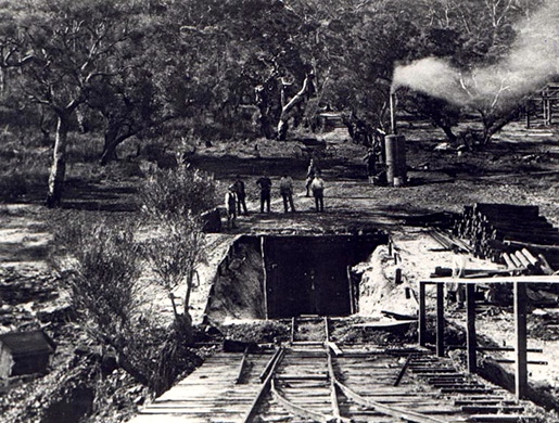Collie Coal Mine-The First Shaft circa 1880-