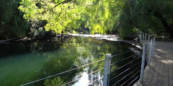 Honeymoon Pool Campsite on the Collie River, near Collie