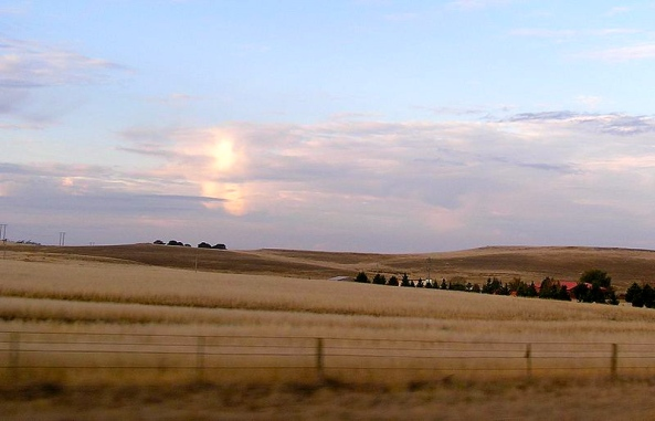 Monaro High Plain