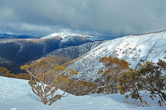 Snowy Mountain550x550,075,f