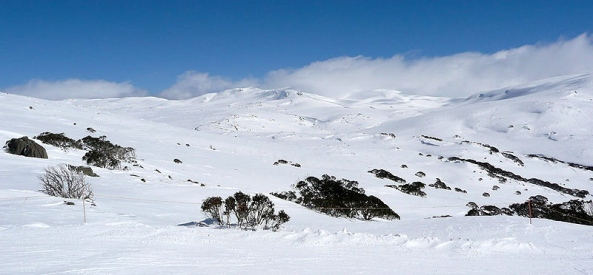 Towards Kosciusko from Kangaroo Ridge