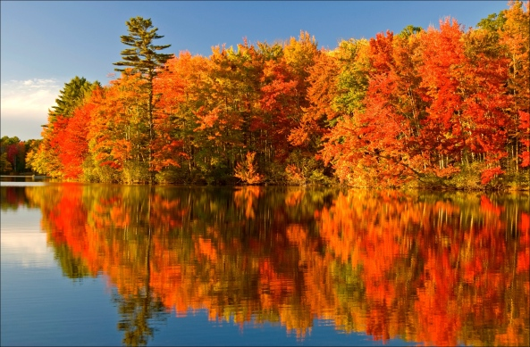Autumn Colours in Algonquin Park, Ontario