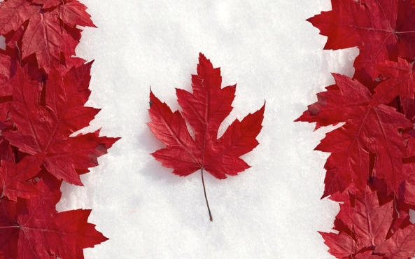 Flag of Canada with Maple Leaves