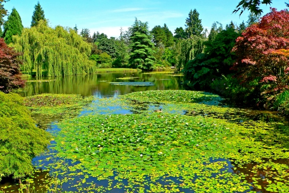 VanDusen Botanical Garden Vancouver British Columbia