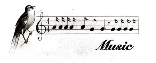 Bird-and-Notes- Music Banner