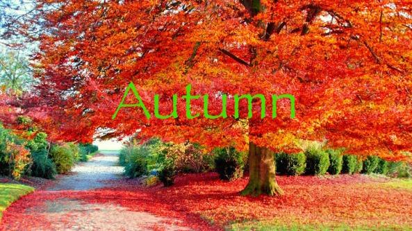 Autumn Title (s)