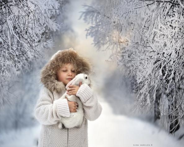 Magnificent photo by Elena Shumilova